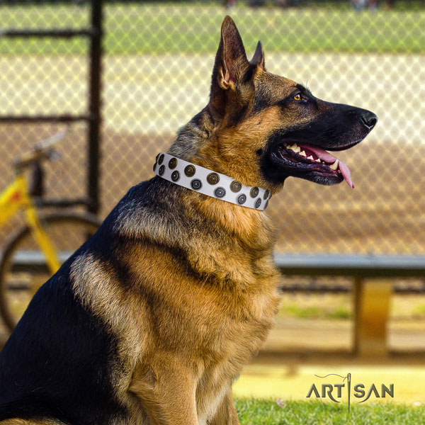 German Shepherd full grain leather dog collar with adornments for your handsome dog