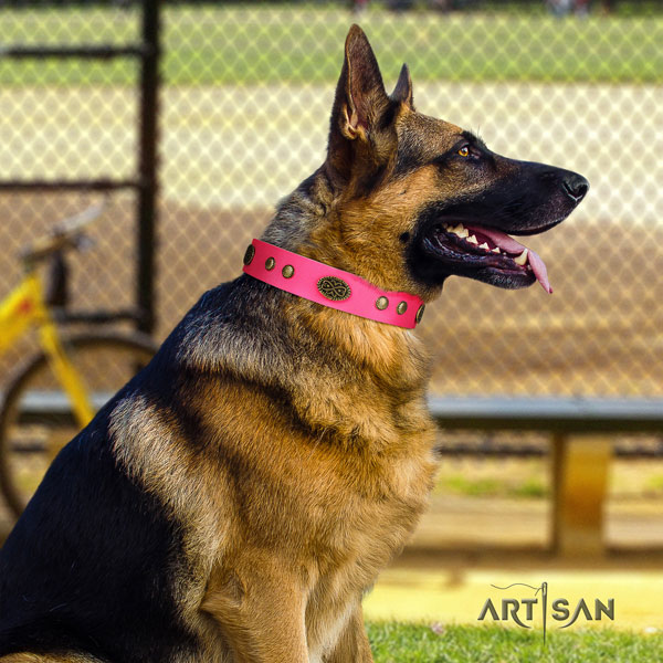 German Shepherd genuine leather dog collar with adornments for your impressive doggie
