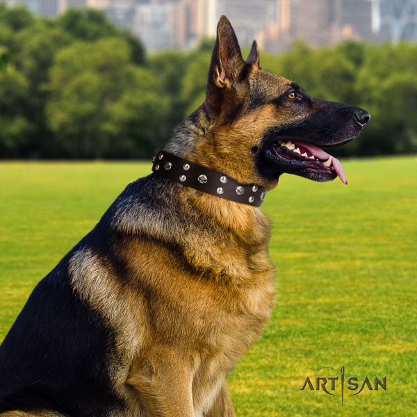 German Shepherd genuine leather dog collar with decorations for your stylish four-legged friend