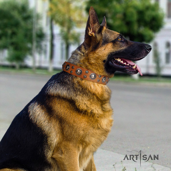 German Shepherd natural genuine leather dog collar with embellishments for your beautiful dog