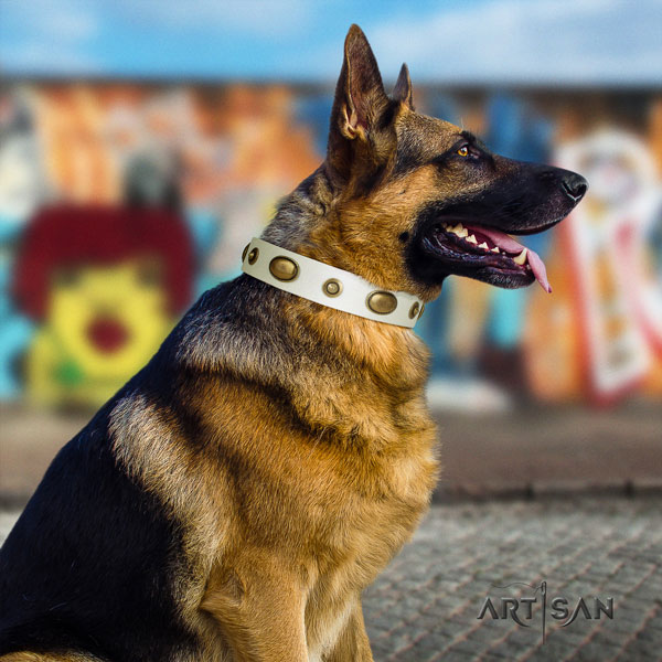 German Shepherd leather dog collar with studs for your lovely pet