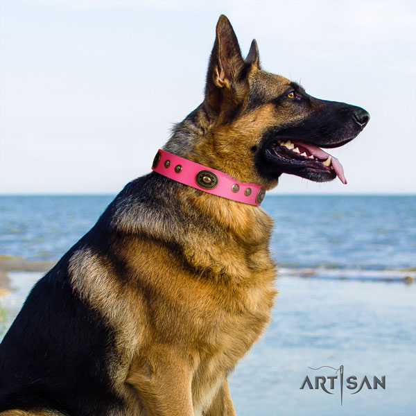 German Shepherd leather dog collar with embellishments for your beautiful pet