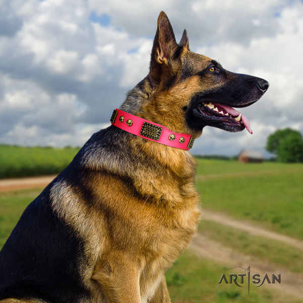German Shepherd full grain leather dog collar with adornments for your handsome canine
