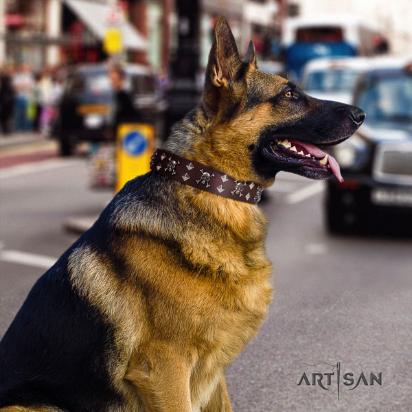 German Shepherd full grain natural leather dog collar with adornments for your impressive doggie