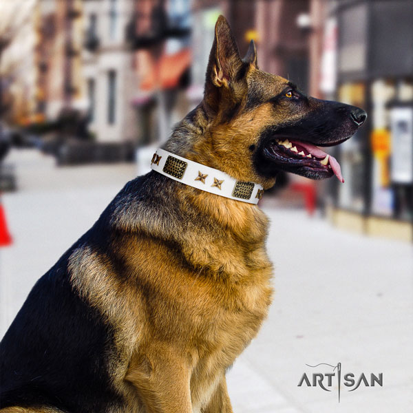 German Shepherd genuine leather dog collar with decorations for your impressive pet