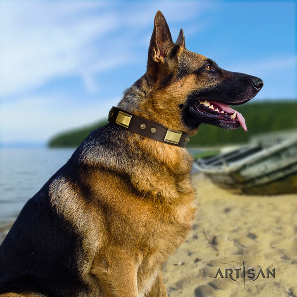 German Shepherd natural genuine leather dog collar with decorations for your beautiful canine
