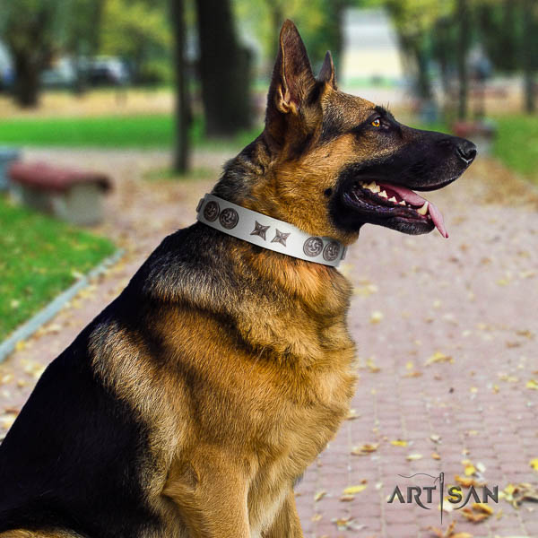German Shepherd awesome full grain genuine leather collar with adornments for your four-legged friend