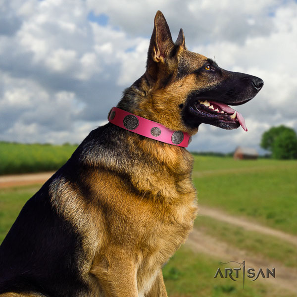 German Shepherd fashionable natural genuine leather collar with embellishments for your doggie