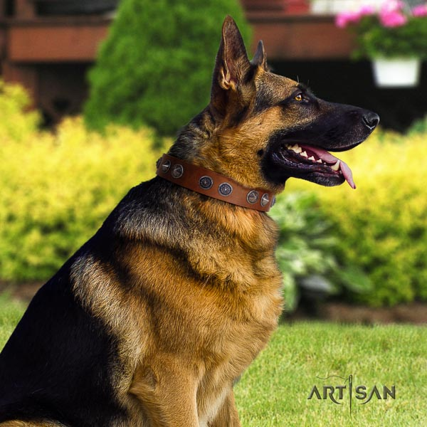 German Shepherd perfect fit natural genuine leather dog collar with stylish design decorations