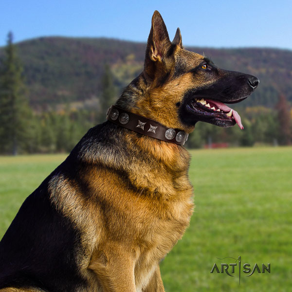 German Shepherd inimitable full grain natural leather collar with studs for your dog