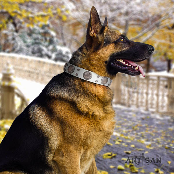 German Shepherd comfortable leather dog collar with awesome adornments