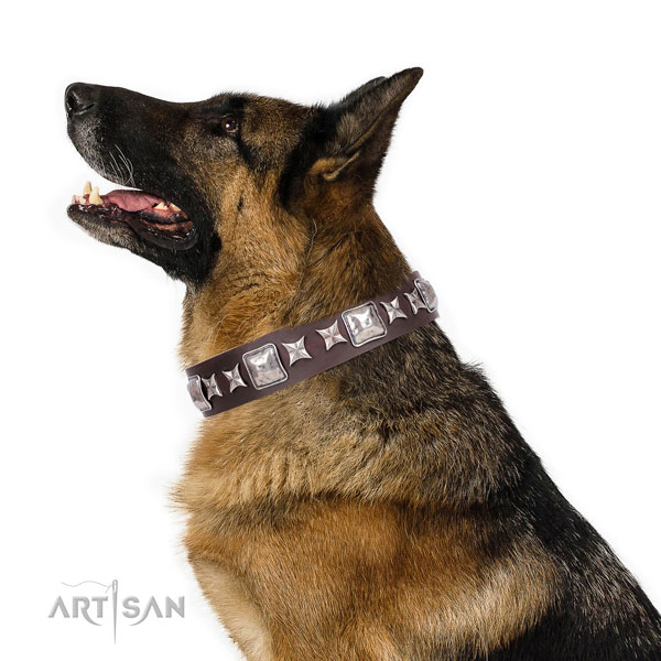 German Shepherd embellished natural genuine leather dog collar for daily use