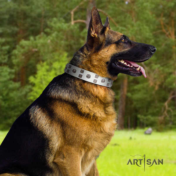 German Shepherd handcrafted genuine leather collar with adornments for your canine