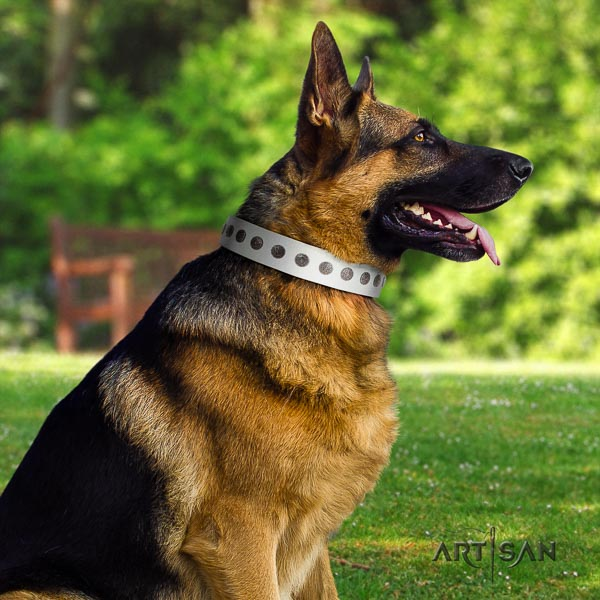 German Shepherd stylish leather collar with embellishments for your dog