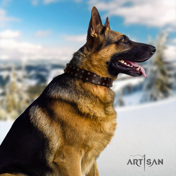 German Shepherd comfortable full grain natural leather dog collar with designer adornments