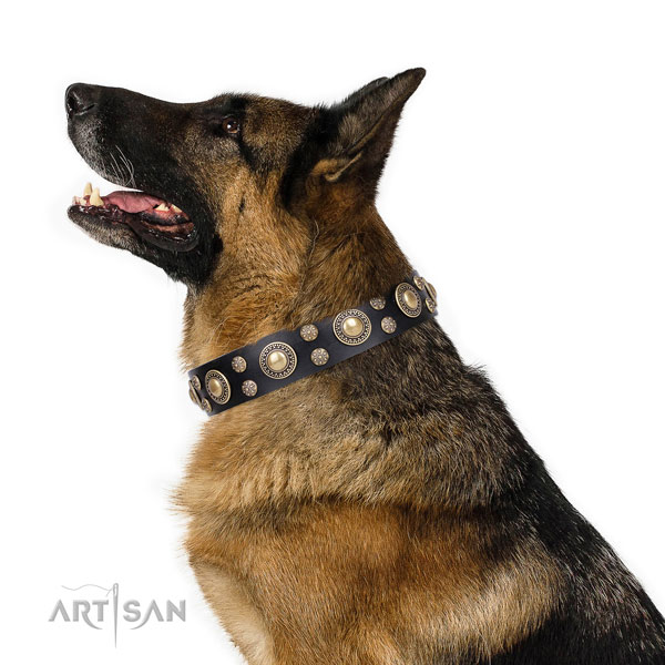 German Shepherd adorned full grain leather dog collar for comfy wearing