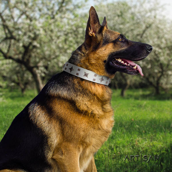 German Shepherd exceptional full grain genuine leather collar with embellishments for your canine