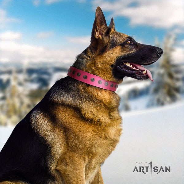 German Shepherd exquisite genuine leather collar with embellishments for your dog