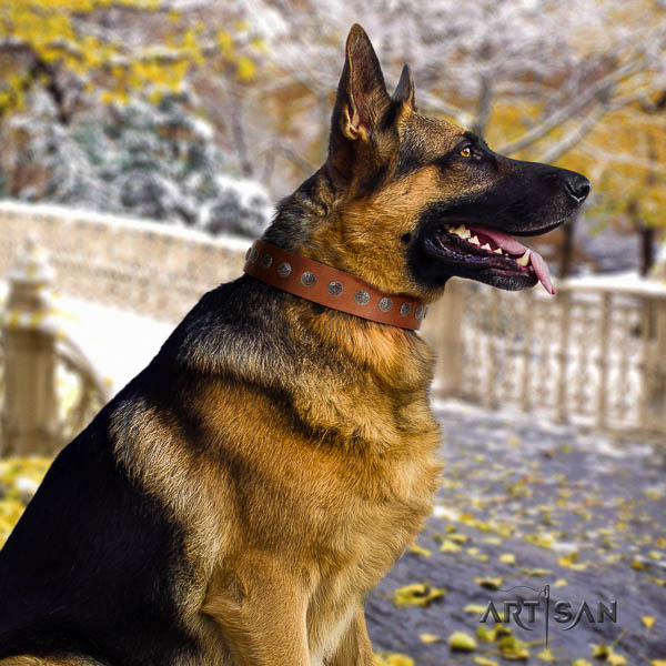 German Shepherd trendy full grain leather collar with decorations for your pet