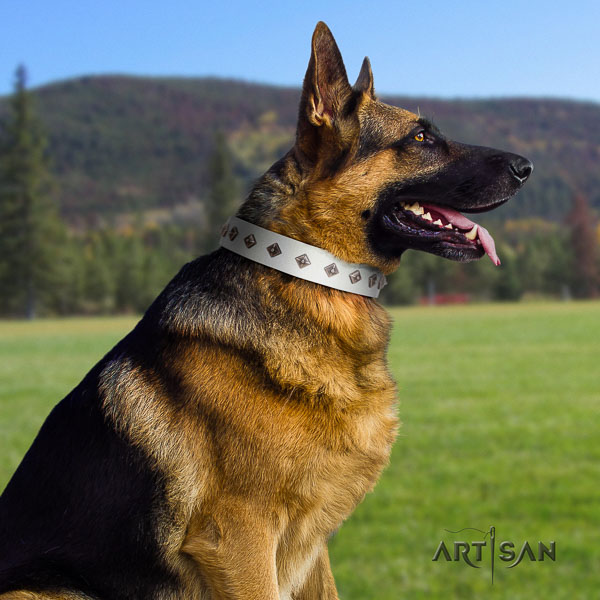 German Shepherd top notch leather collar with decorations for your four-legged friend