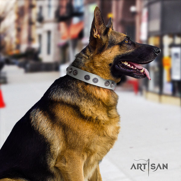 German Shepherd adjustable full grain leather dog collar with incredible decorations