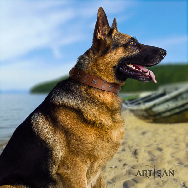 German Shepherd awesome natural genuine leather collar with adornments for your doggie