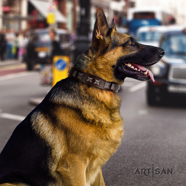 German Shepherd awesome genuine leather collar with adornments for your dog