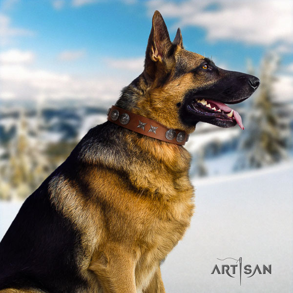 German Shepherd easy wearing genuine leather collar with studs for your canine
