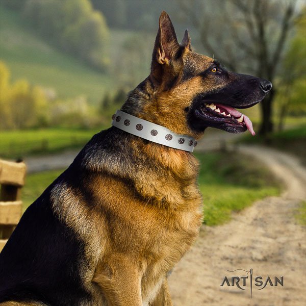 German Shepherd easy adjustable full grain leather dog collar with stylish embellishments