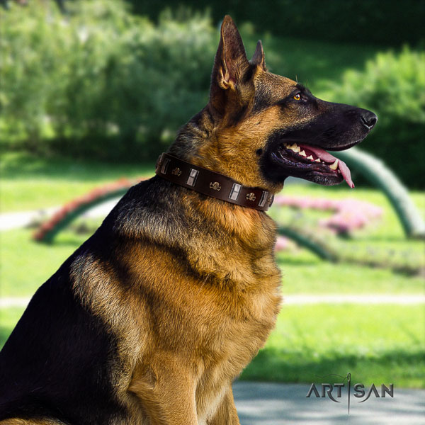 German Shepherd fine quality full grain natural leather dog collar with amazing studs