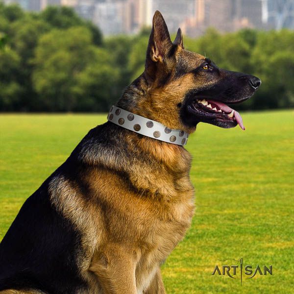 German Shepherd comfortable full grain natural leather dog collar with top notch studs