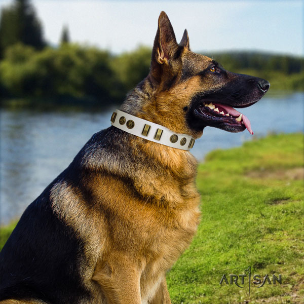 German Shepherd leather dog collar with adornments for your attractive pet