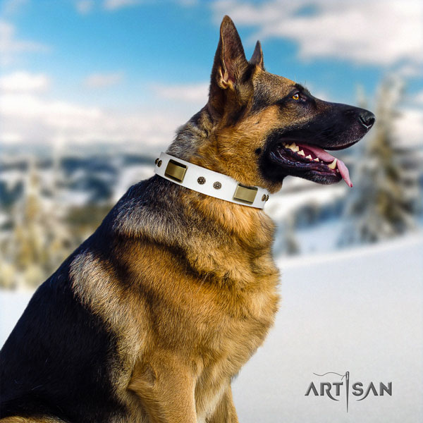 German Shepherd genuine leather dog collar with studs for your attractive dog