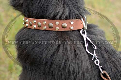 Nickel Half Cones Decoration On Leather Dog Collar