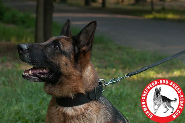 Strong Leather German Shepherd Collar with Non-corrosive Hardware