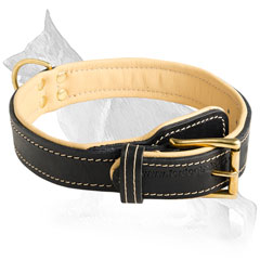 Super Soft Leather Dog Collar with Nappa Padding inside
