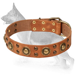Walking Leather Collar for German Shepherd