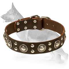 Leather Collar for German Shepherd Decorated