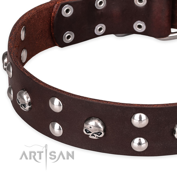 Casual style leather dog collar with cute embellishments