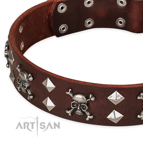 Best quality leather dog collar for reliable usage