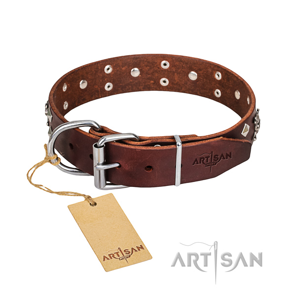 Resistant leather dog collar with chrome plated details