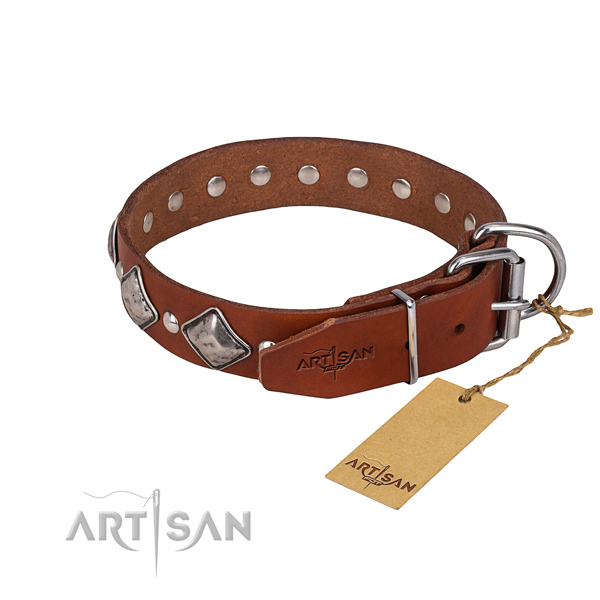 Full grain natural leather dog collar with polished exterior
