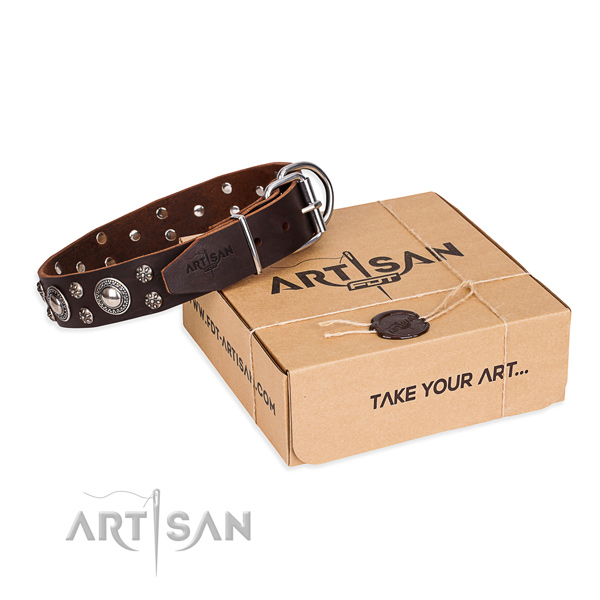 Day-to-day leather dog collar with exciting decorations
