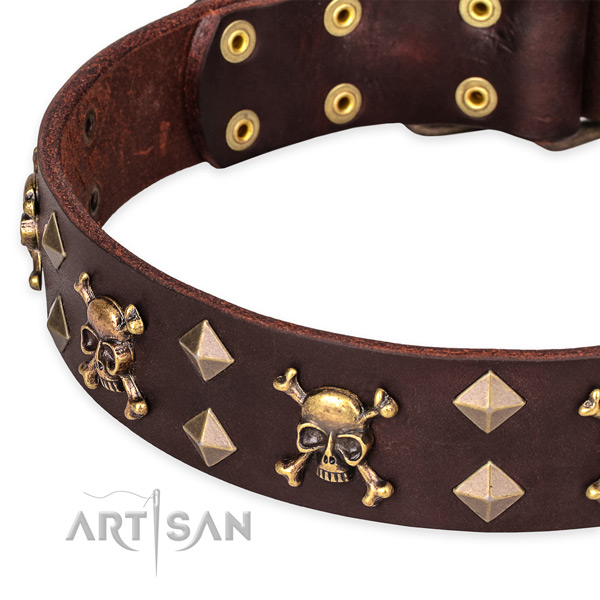 Everyday leather dog collar with elegant decorations
