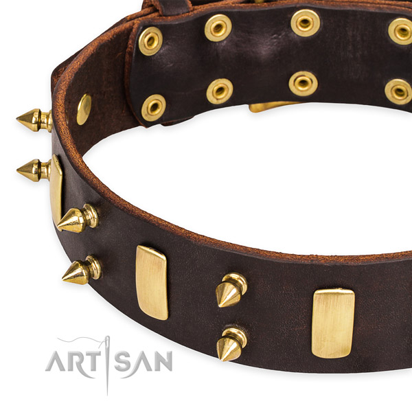 Easy to use leather dog collar with almost unbreakable brass plated hardware