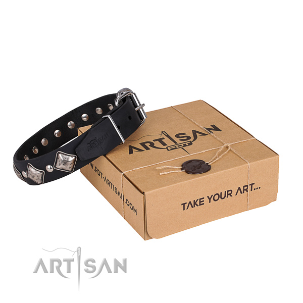 Casual style leather dog collar with fashionable adornments