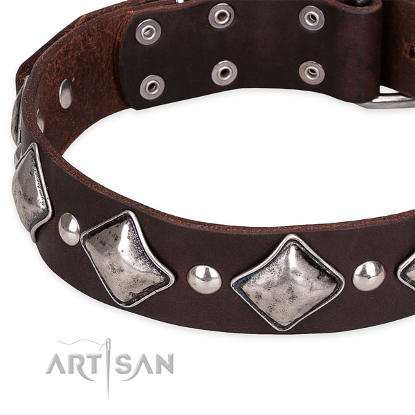 Quick to fasten leather dog collar with resistant chrome plated set of hardware