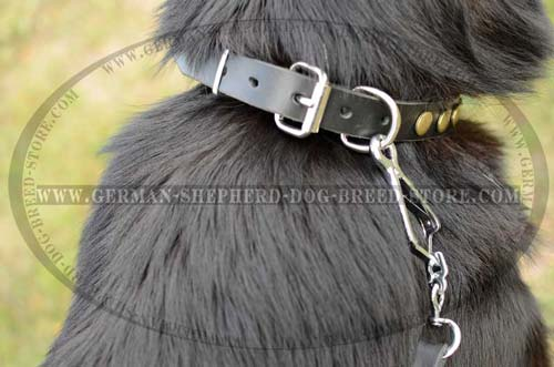 Nickel Plated Buckle For Proper Fixation On Dog Collar