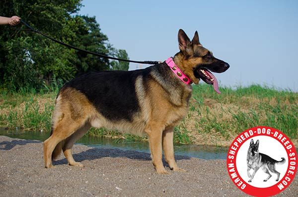 Pink Leather Collar with Vintage Decorations for German Shepherd Girl