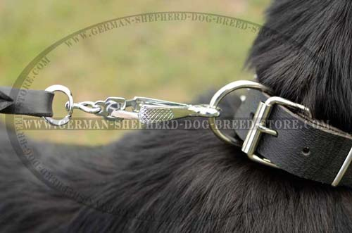 Steel D-ring On Dog Collar Leather Fashionable